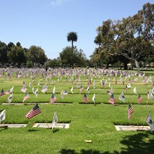 Woodlawn Cemetery on Memorial Day