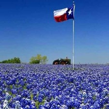 The great State of Texas!
